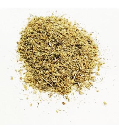 Achillea millefoglie erba con fiori taglio tisana