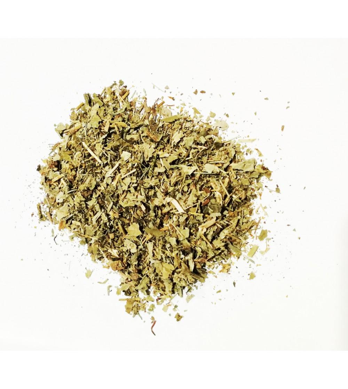 Alchemilla vulgaris erba taglio tisana