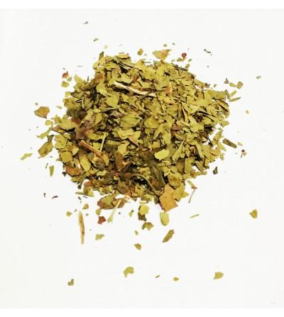 Ginkgo biloba foglie taglio tisana