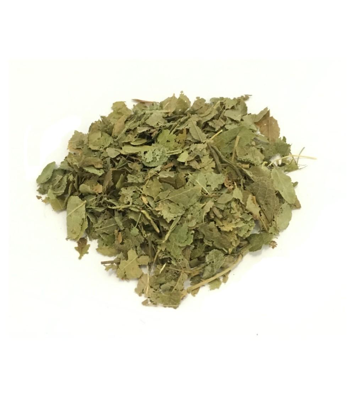 Mentuccia, Calamintha officinalis foglie taglio tisana (Nepitella)