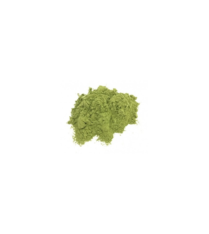 Equiseto, Equisetum arvense erba polvere (Coda cavallina)