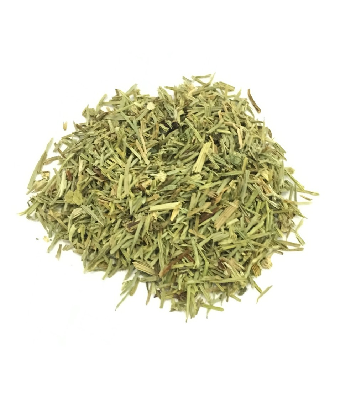 Equiseto, Equisetum arvense erba taglio tisana (Coda cavallina)