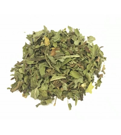 Menta piperita foglie monde taglio tisana
