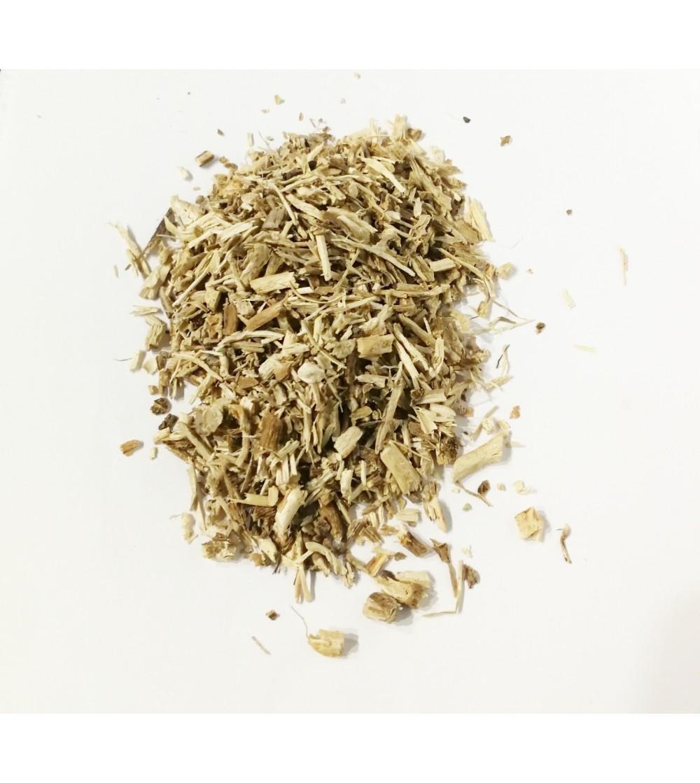 Cicoria, Cichorium intybus radice taglio tisana