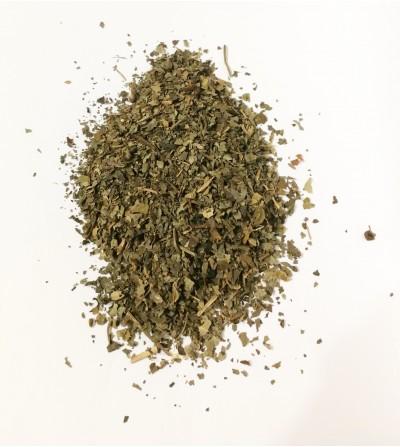 Sambuco foglie taglio tisana