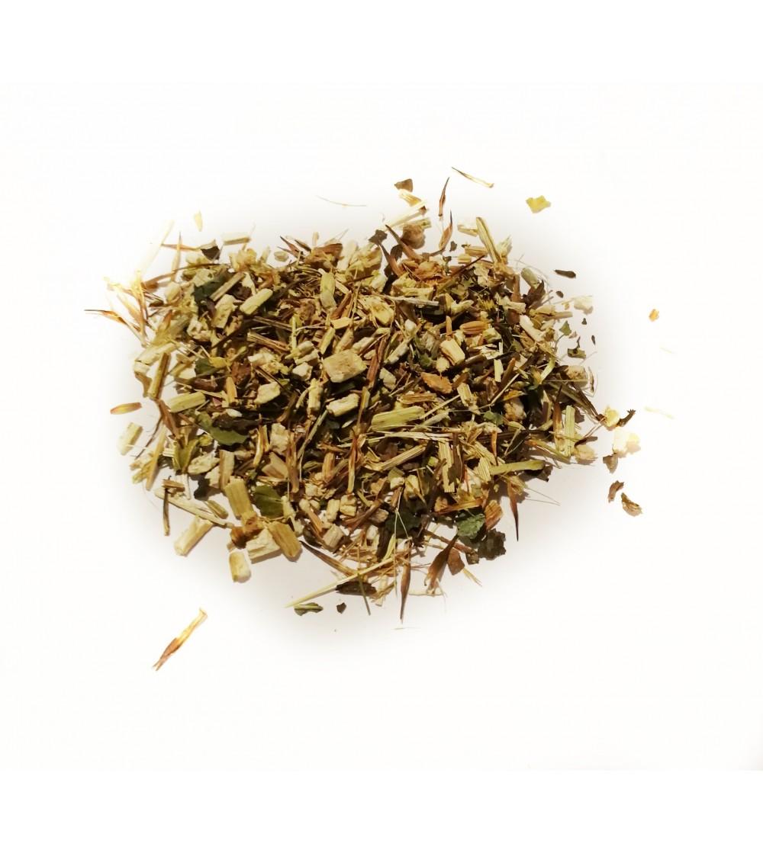 Echinacea erba taglio tisana