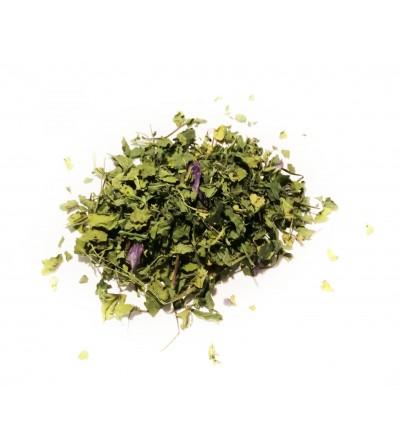 Malva, Malva sylvestris fiori e foglie taglio tisana