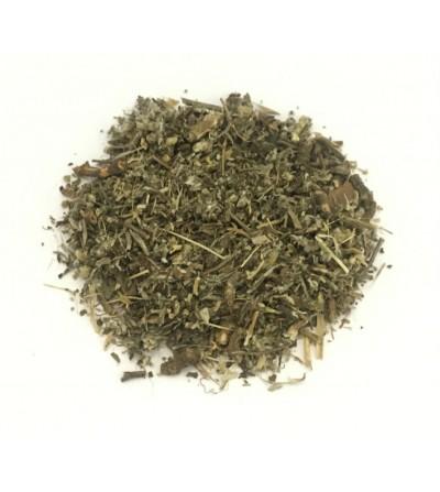Acetosa, Rumex acetosa erba taglio tisana