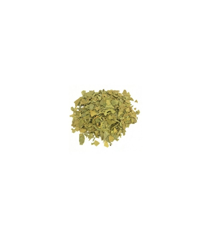 Alloro, Laurus nobilis foglie taglio tisana
