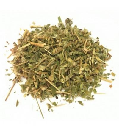 Agrimonia eupatoria sommità taglio tisana