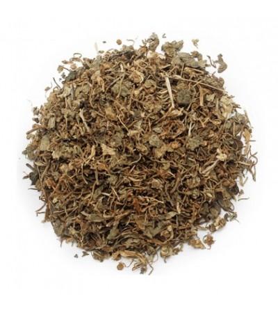 Centella asiatica, Hydrocotyle asiatica erba taglio tisana