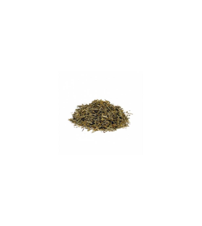 Escolzia californica erba con fiori taglio tisana
