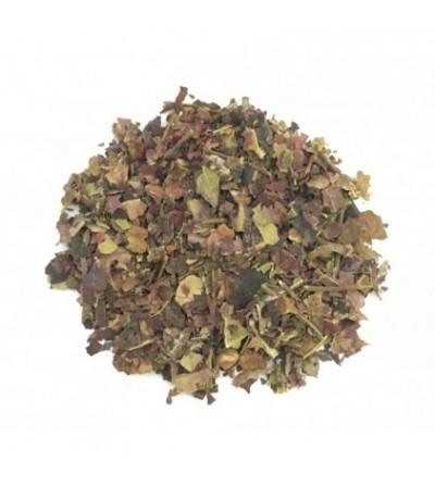 Vite rossa, Vitis vinifera foglie taglio tisana