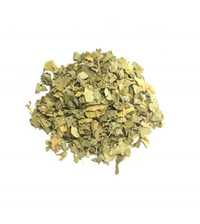Mirto, Myrtus communis foglie taglio tisana