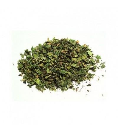 Ortica, Urtica dioica foglie taglio tisana