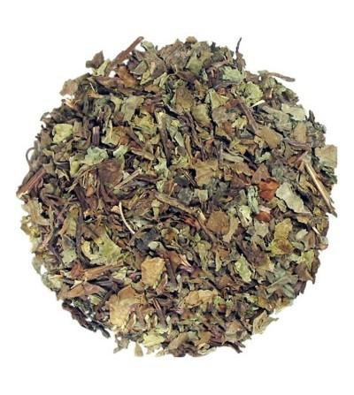 Ortosiphon (Tè di Giava), Orthosiphon stamineus foglie taglio tisana