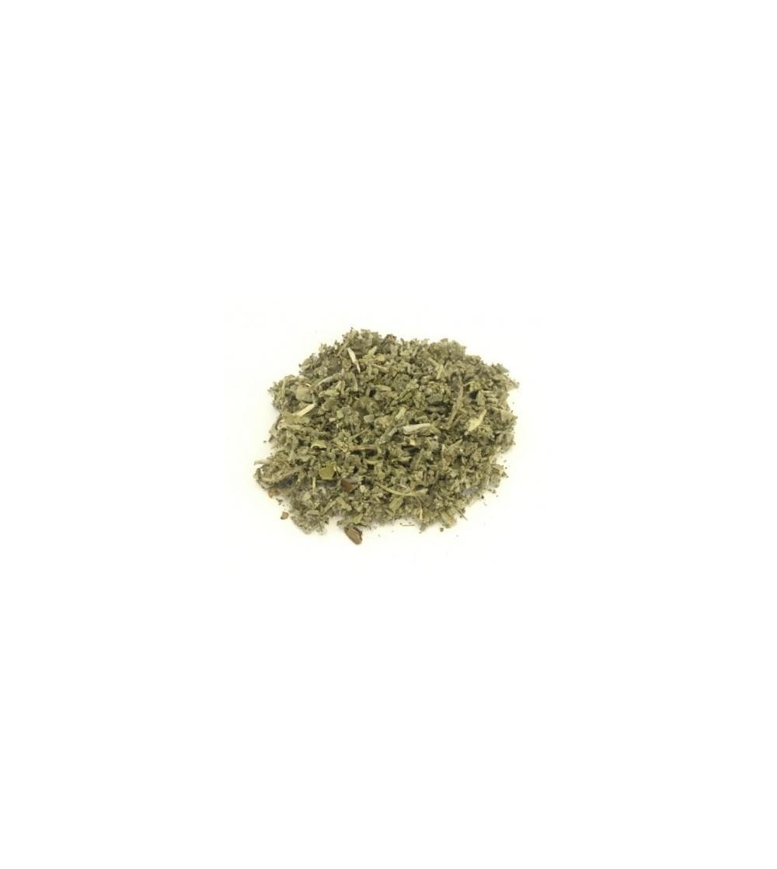 Salvia officinalis foglie taglio tisana