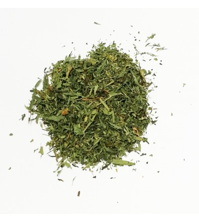 Stevia rebaudiana foglie taglio tisana