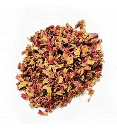 Rosa gallica petali rossi taglio tisana