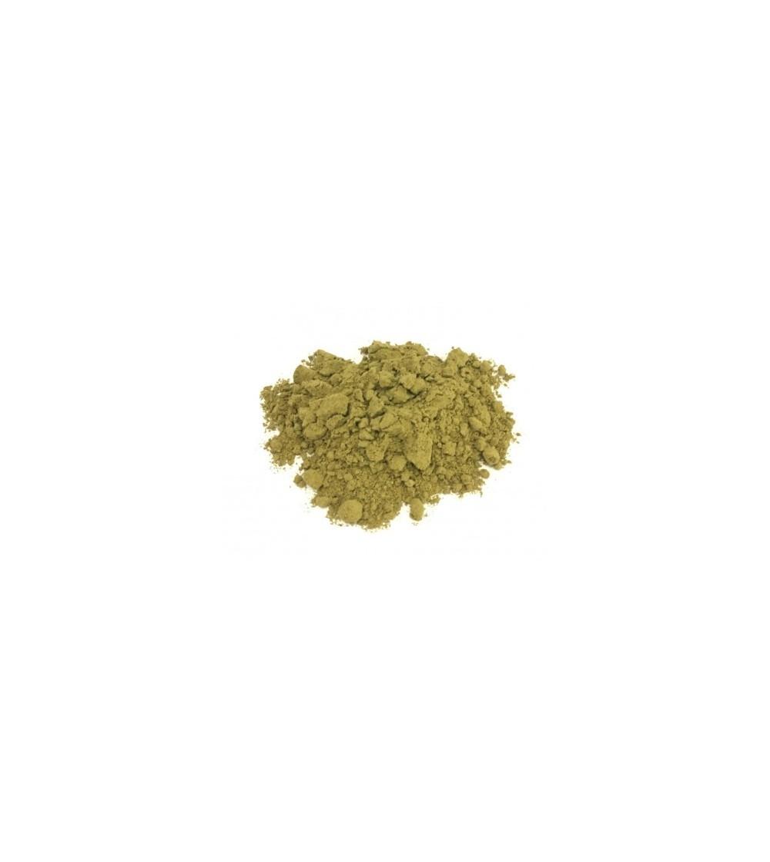 Fucus vesiculosus tallo polvere Quercia marina 500 g