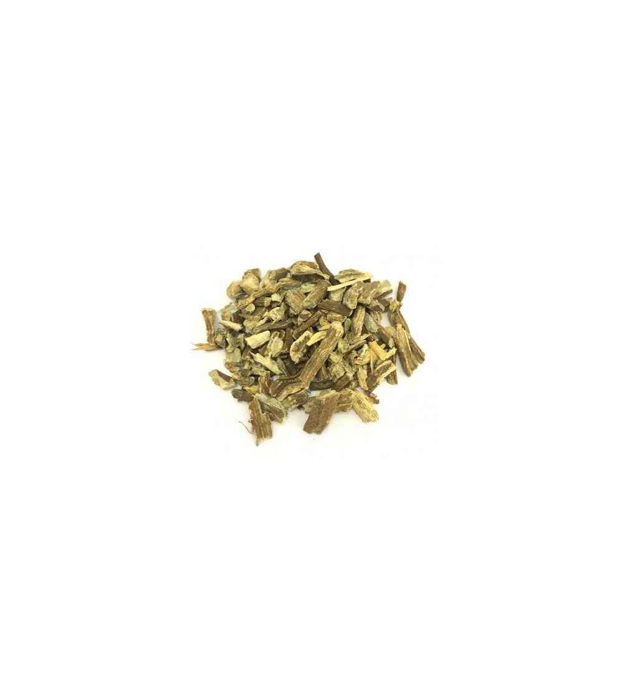 Echinacea pallida radice taglio tisana