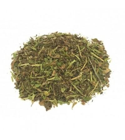 Spaccapietra, Ceterach officinarum foglie taglio tisana