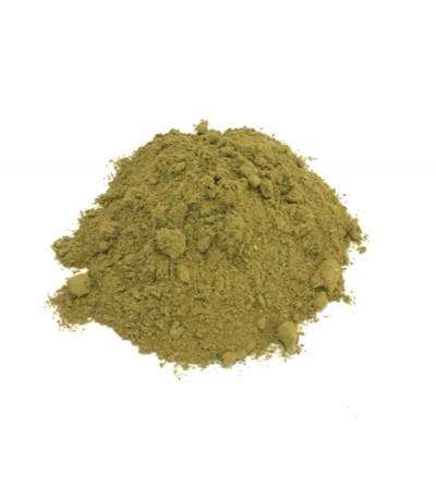 Boldo del Cile, Peumus boldus foglie polvere 500 g