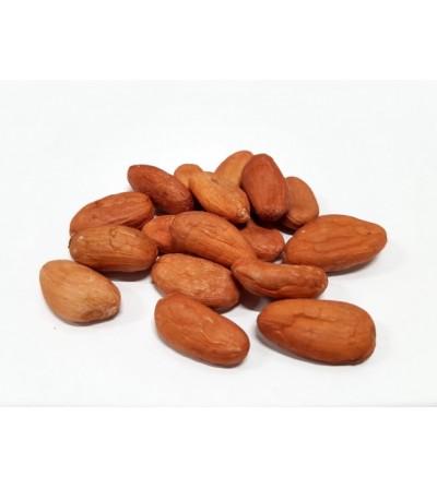 Cacao, Theobroma cacao fave intere crude 500 g