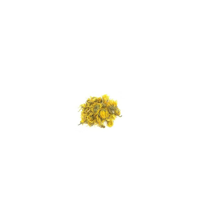 Cactus, Opuntia ficus indica fiori taglio tisana (Fichi d'India) 500 g