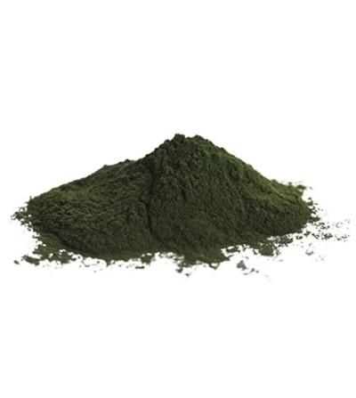 Chlorella, Chlorella pyrenoidosa alga tallo polvere 500 g