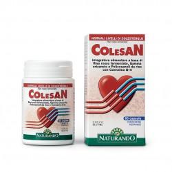 Colesan