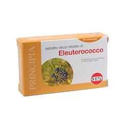 Eleuterococco estratto secco compresse