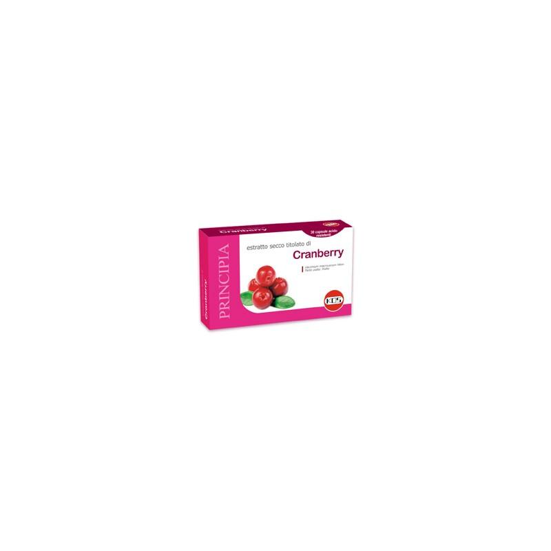 Cranberry, mirtillo rosso americano Kos
