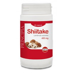 Shiitake KOS